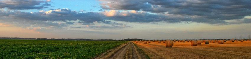 Bioteconologie agroalimentari